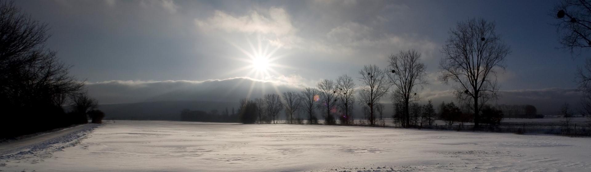 Winterbild-Deister